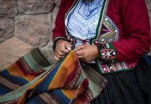 Il vello di vicuña: il tessuto più raro e pregiato al mondo